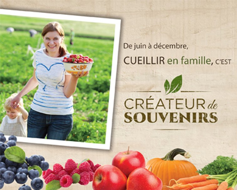Picking creates memories – Conseil de l'industrie bioalimentaire de l'estrie