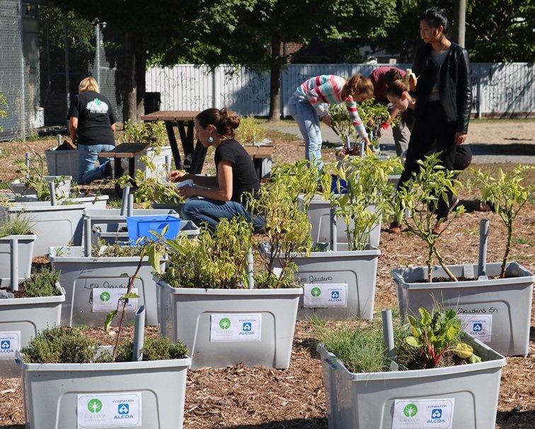 Jeune COOP Les jardins en Équilibre – Collège Montmorency